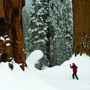 Caminhada na neve