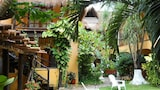 Hotel Bosque Caribe , 5th Av Zone - Playa del Carmen Hotels