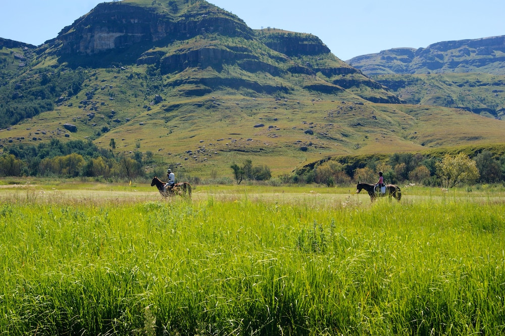 Horse Riding, Premier Resort Sani Pass