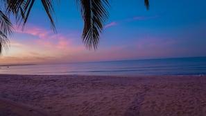 Private beach, sun loungers, beach umbrellas, windsurfing