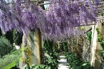Via Privata Montagu, 9 - 17021 Alassio, Italy.