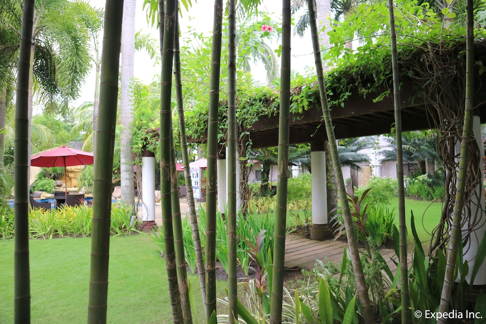 Garden, Mount Sea Resort