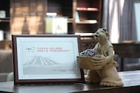 Shichahai Shadow Art Performance Hotel (10 of 44)