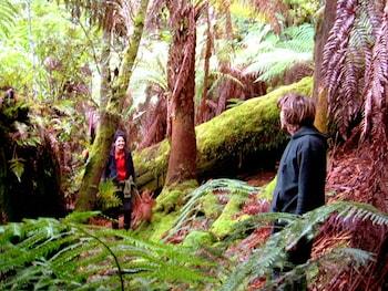 Huon Bush Retreats Tasmania Australia