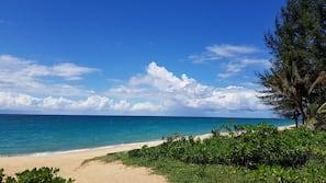 On the beach, sun-loungers, beach towels, beach yoga