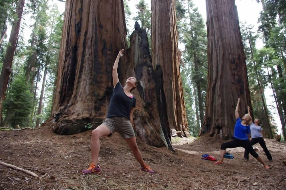 Yoga, Montecito Sequoia Lodge