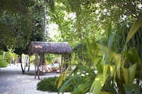 Diamonds Thudufushi Beach & Water Villas (11 of 97)