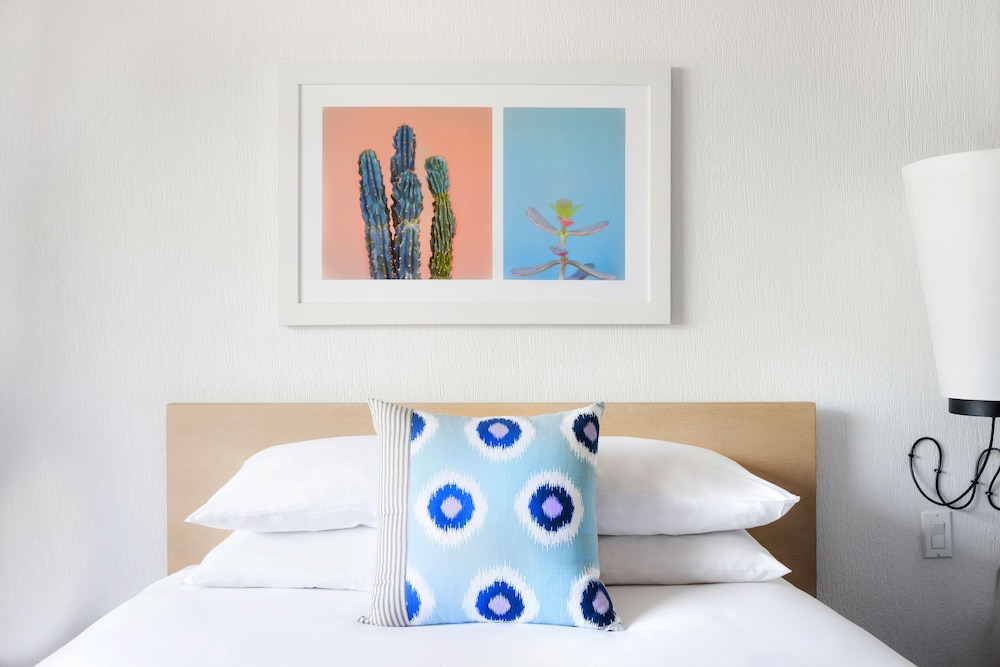 Room, The Saguaro Scottsdale