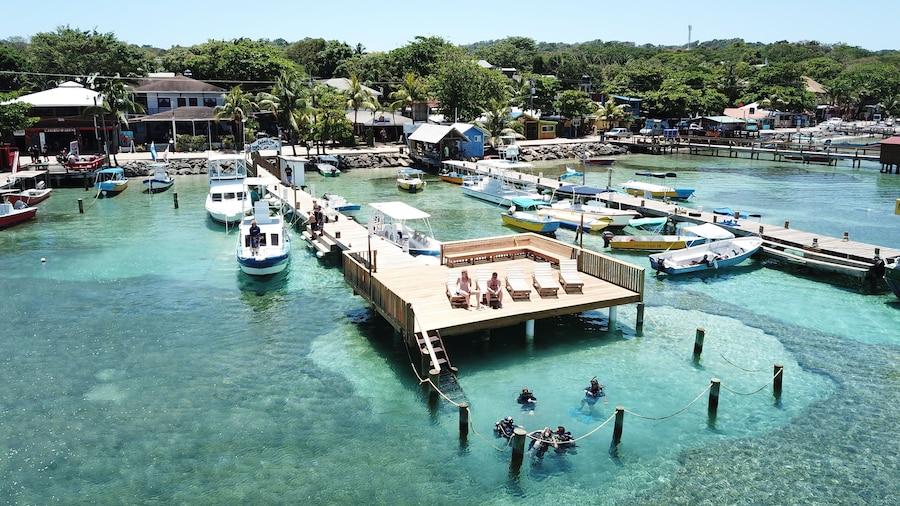 Splash Inn Dive Resort & Villas