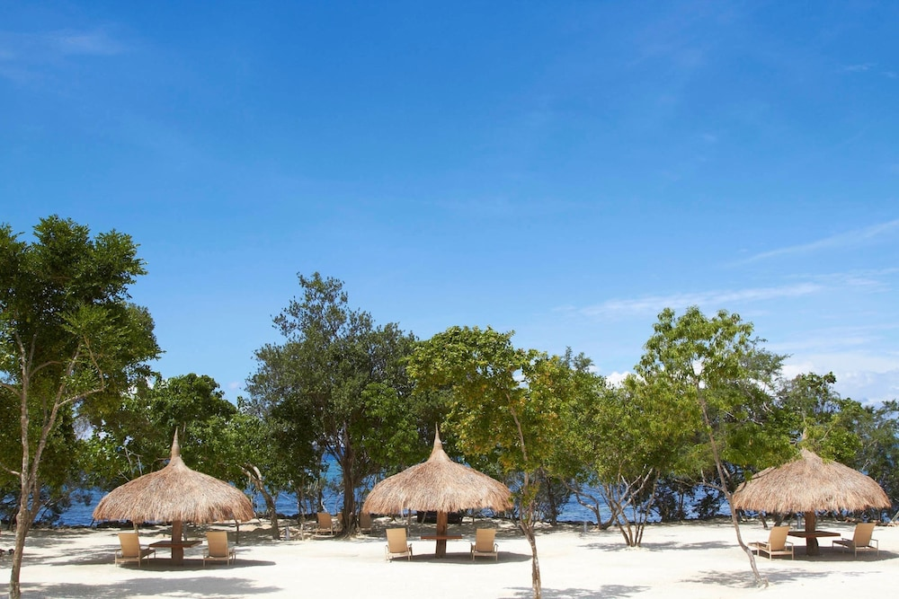 Bluewater Panglao Beach Resort 2019 Hotel Prices
