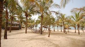 Plage à proximité, parasols, serviettes de plage