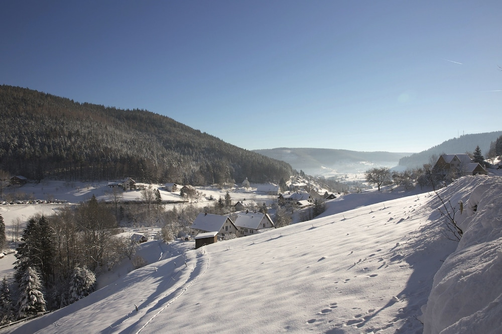 Snow and Ski Sports, Traube Tonbach