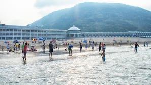 Private beach, snorkeling, windsurfing, surfing