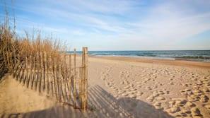 On the beach, beach bar, surfing