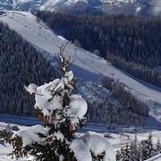 Pista da sci