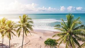 On the beach, beach massages, surfing