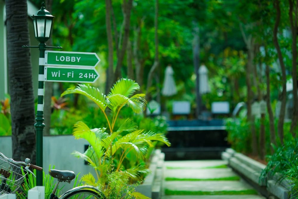 Foresta Ca Hotels