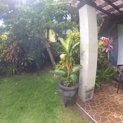 Blick auf den Garten