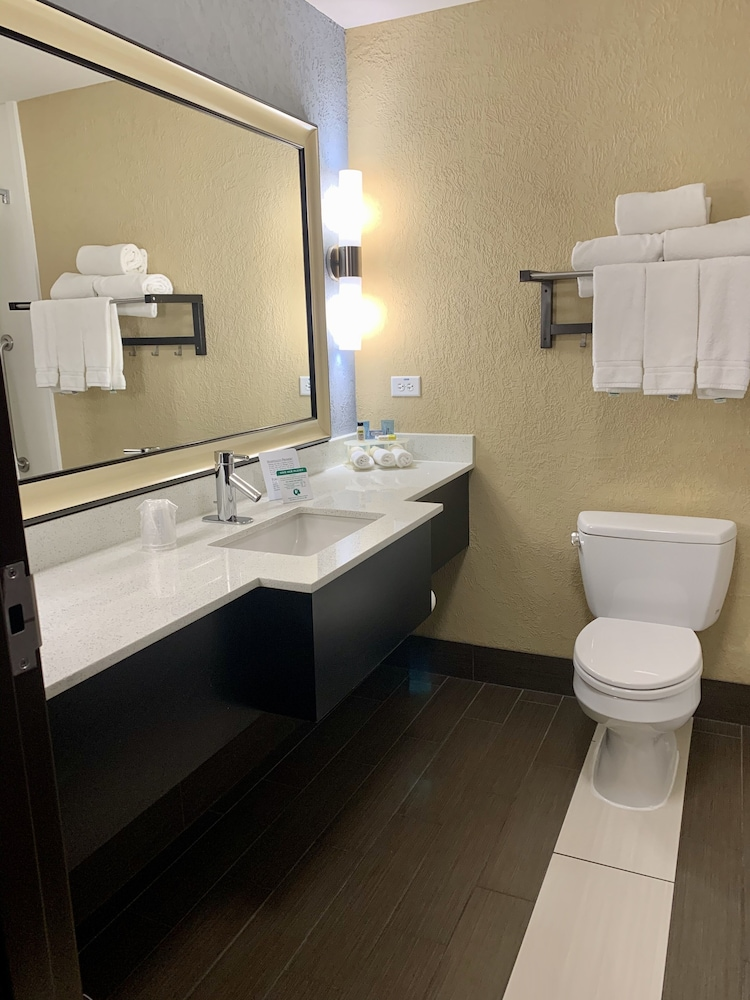 Bathroom, Holiday Inn Express and Suites Kansas City Airport