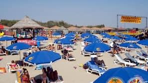 Una spiaggia nelle vicinanze, lettini da mare, ombrelloni, windsurf