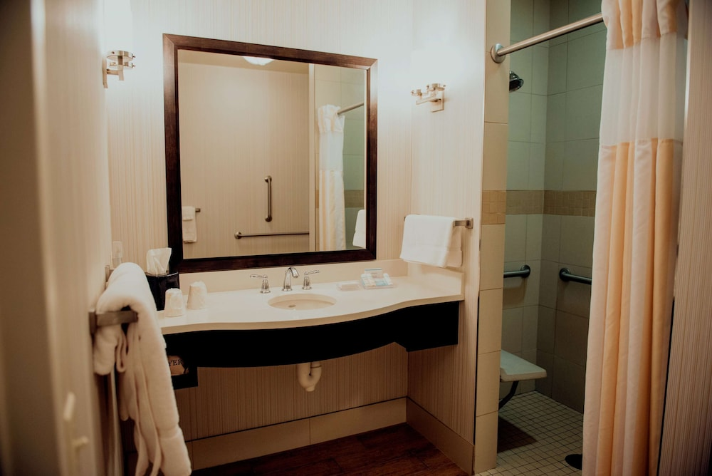 Bathroom, Hilton Garden Inn Auburn