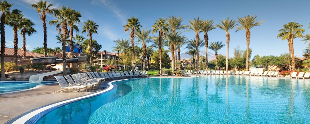 Pool, 2020 Coachella Valley Music and Arts Festival Perfect Place to Stay