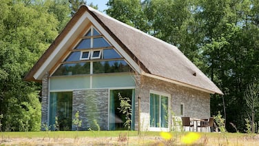 Thatched Villa With two Bathrooms, at 8 km. From Hoogeveen