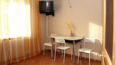 1-room Furnished Apartment With a Balcony in the Center of Ulyanovsk Daily