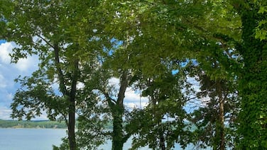 NEW! Ray's Retreat - Pickwick Lake - Great Getaway