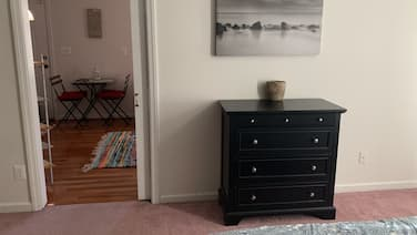 Cozy and fresh one-bedroom, 10 minutes from Old Town Alexandria