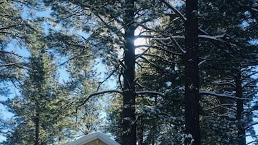 Charming 2Br 2Ba cabin with big windows in the tall pines.