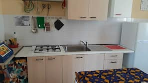 Fridge, stovetop, toaster, cookware/dishes/utensils