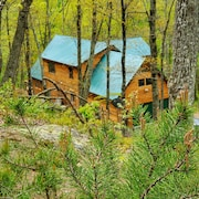 Potomac Cabin, Riverfront, 7 Acres, Sleeps 10