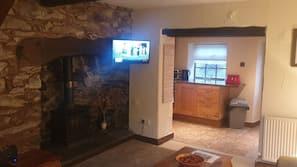 30-Zoll-Fernseher mit Digitalempfang, Kamin