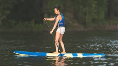 Paddleboard Rental B