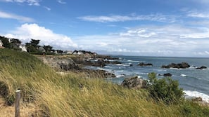 Nära stranden