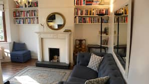 TV, fireplace, toys, books