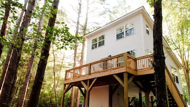 The Tiny House Tree House
