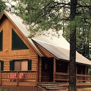 Cozy Log Cabin w/ Hottub Near Purgatory Ski Resort