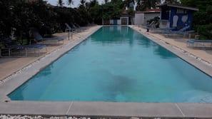 Hồ bơi trong nhà, ghế dài tắm nắng