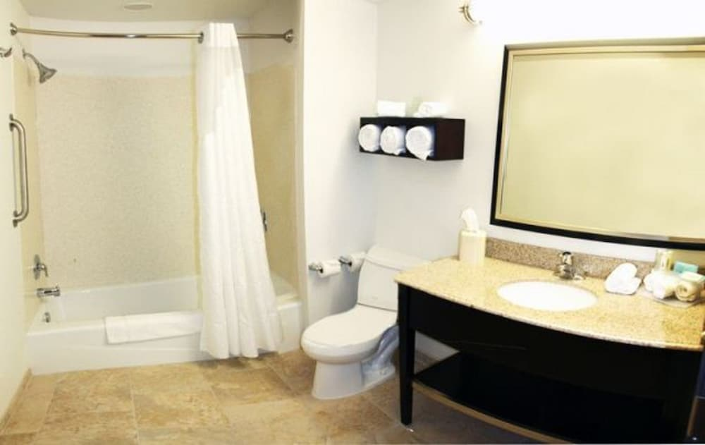 Bathroom, Holiday Inn Express Toledo North, an IHG Hotel