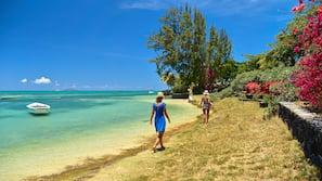 Plage, serviettes de plage, snorkeling, kayak