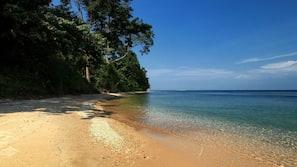 Snorkeling, kayak, pêche sur place