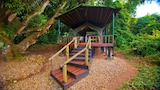 Mbali Mbali Lodges and Camps Gombe Forest Lodge - Kigoma Hotels