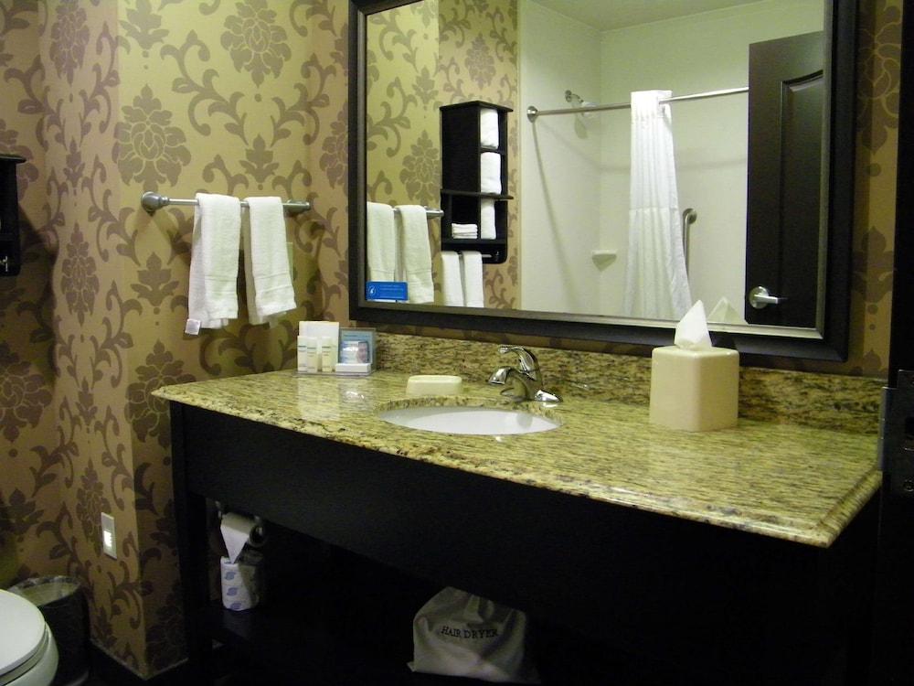 Bathroom, Hampton Inn & Suites Hope