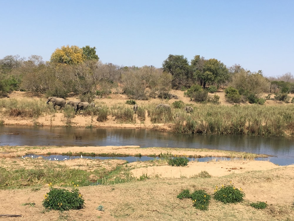 View from Property, Sabie River Bush Lodge