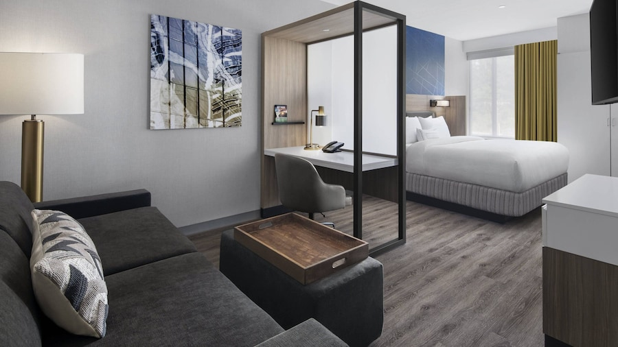 SpringHill Suites by Marriott East Rutherford Meadowlands/Carlstadt