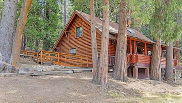 Dog-friendly Cabin in the Woods With Wifi, Wood Stove, and Private Washer/dryer!