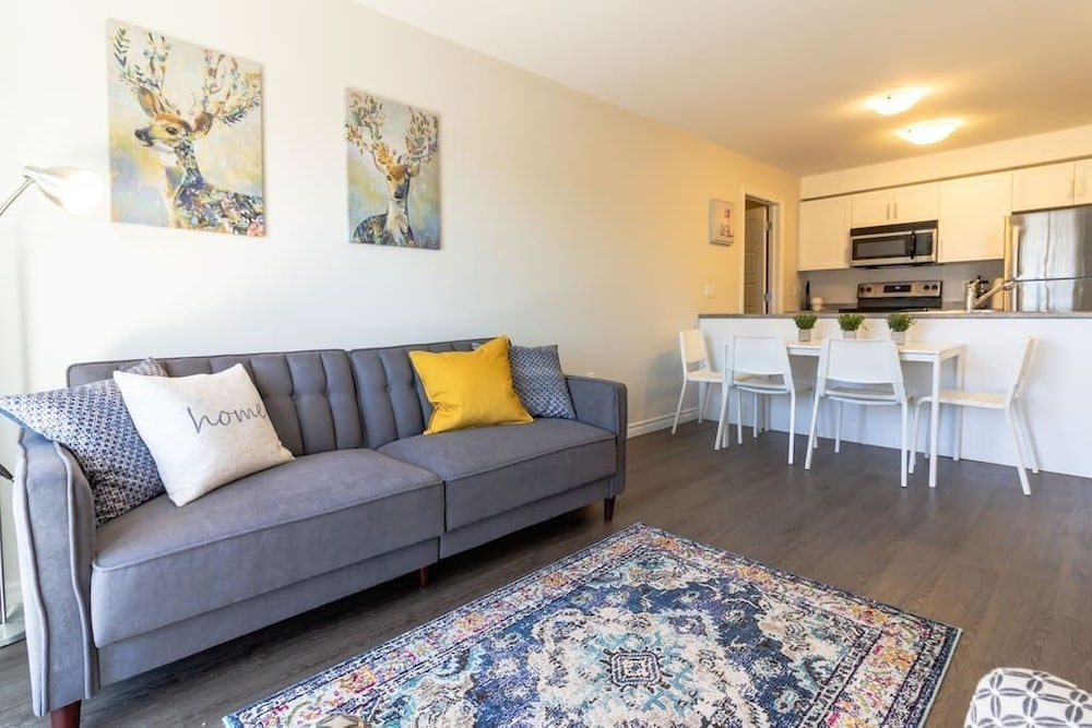 Living Room, Newly Renovated Modern Condo  Near Hospital, UNB  Patio & Parking  Coffee