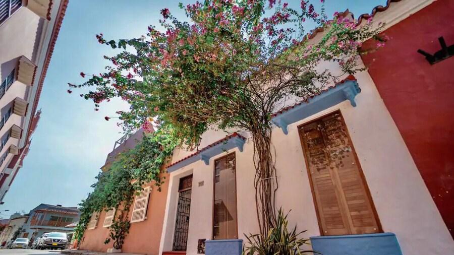 Villa Trinitarias